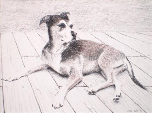 """Made to Order Custom Pet Portrait - Lola"" original fine art by Weston Hobdy"
