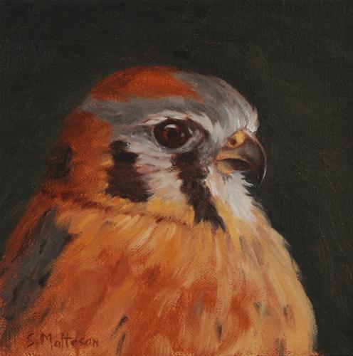 """American Kestrel"" original fine art by Susan Matteson"