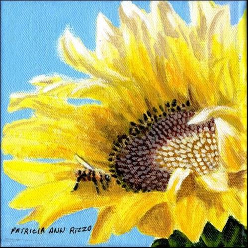 """One Sunny Sunflower"" original fine art by Patricia Ann Rizzo"