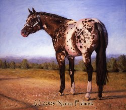 """Richie ""State of Dee Heart"" – Appaloosa World Champion"" original fine art by Nanci Fulmek"