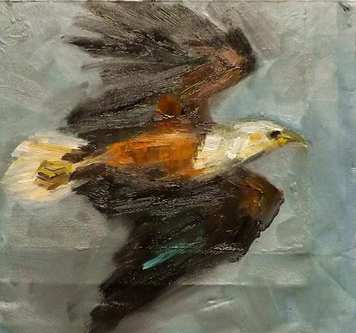 """Eagle,M11"" original fine art by Run-      Zhang Zane"