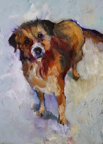 """Sweet Doggie, Pet Portraits by Arizona Artist Amy Whitehouse"" original fine art by Amy Whitehouse"