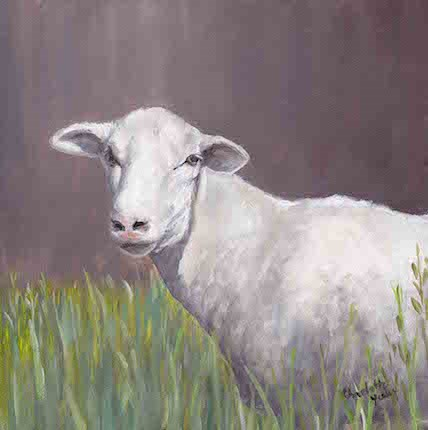 """Sheep"" original fine art by Charlotte Yealey"