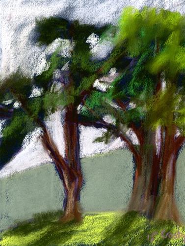 """Midday Tree Shadow"" original fine art by Donna Crosby"