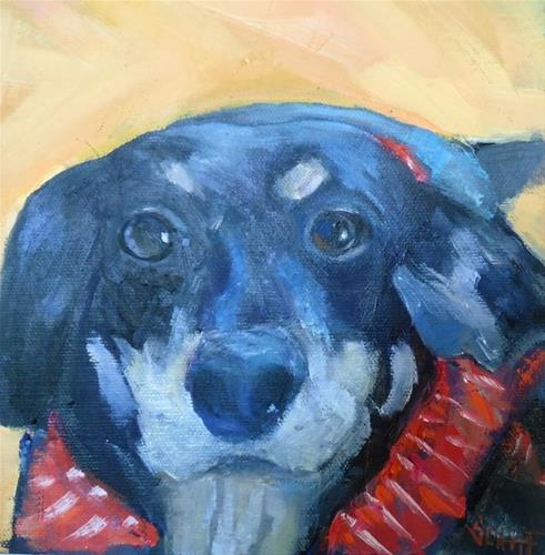 """Dog Painting, Daily Painting, Pet Portrait, Small Oil Painting, The Mutt 8x8x1.5 Oil"" original fine art by Carol Schiff"