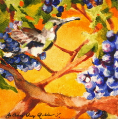 """Hummer and Grapes"" original fine art by JoAnne Perez Robinson"