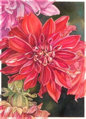 """Dahlia Trio"" original fine art by Nicoletta Baumeister"