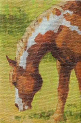 """Meadow XXI"" original fine art by Susan Ashmore"