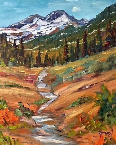 """Creek on Lawn Lake Trail"" original fine art by Liz Zornes"