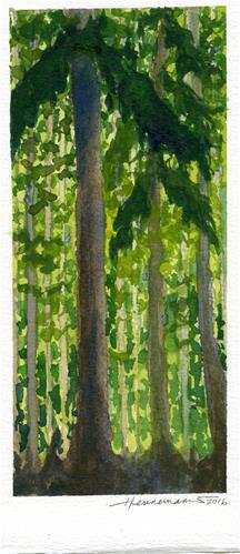 """""""Tall Trees"""" original fine art by Eileen Hennemann"""
