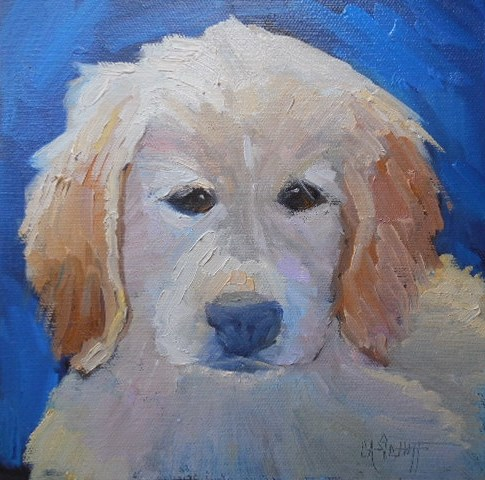 """Dog Painting, Daily Painting, Small Oil Painting, Golden Retriever Portrait, 8x8x1.5 Oil by Carol S"" original fine art by Carol Schiff"