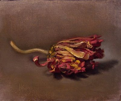 """Dried Zinnia - available"" original fine art by Abbey Ryan"