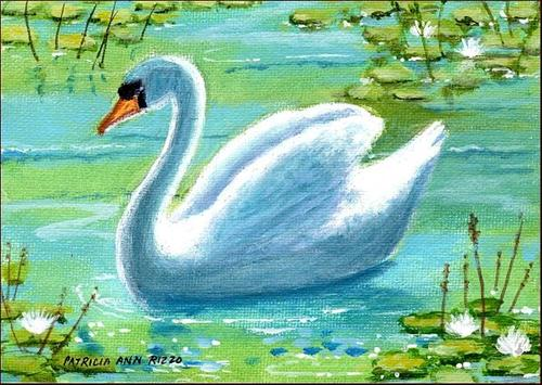 """The Swan"" original fine art by Patricia Ann Rizzo"