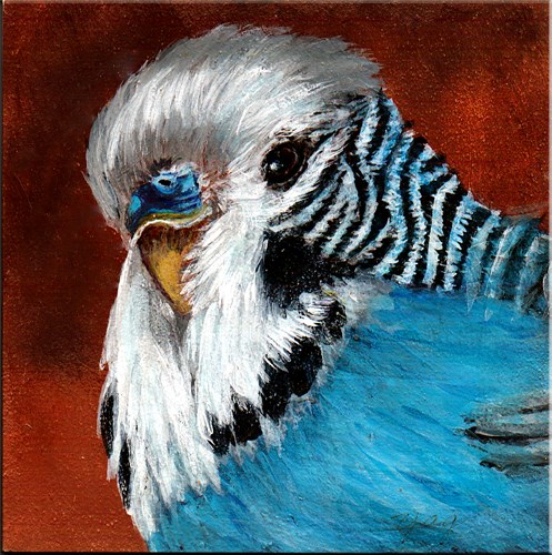 """Pretty Boy, Miniature, Original Acrylic  Painting"" original fine art by Yvette Gaudreau"