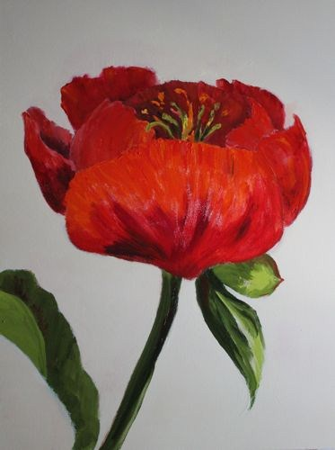 """Red Peony Contemporary Flower Paintings by Arizona Artist Amy Whitehouse"" original fine art by Amy Whitehouse"