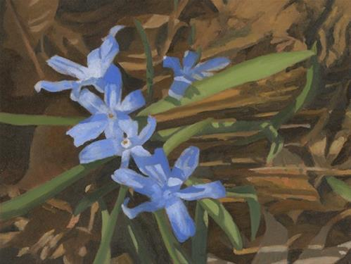 """Scilla"" original fine art by Nancy Herman"