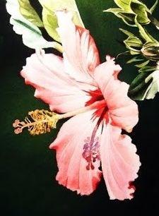 """""""Hybiscus"""" original fine art by Jacqueline Gnott, TWSA, WHS"""