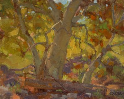 """SEDONA SYCAMORE"" original fine art by James Coulter"