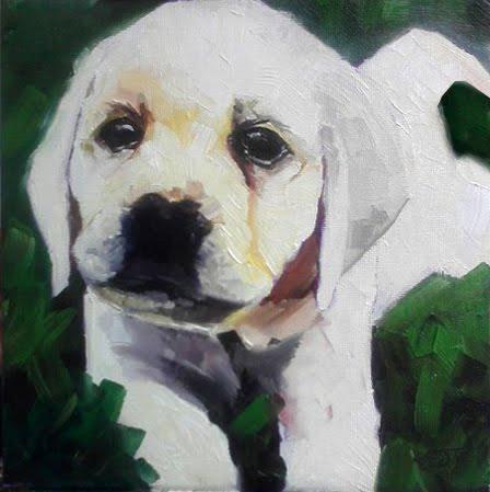 """""""#35 - Puppy Parker No. 2"""" original fine art by Elizabeth Dawn Johnston"""