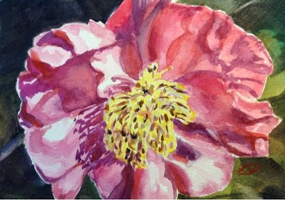 """Day 15 - Red Camellia"" original fine art by Lyn Gill"