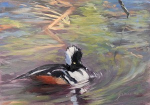 """Merganser on the Brook"" original fine art by Jamie Williams Grossman"