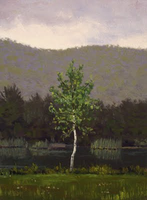 """Young Birch Tree"" original fine art by Abbey Ryan"