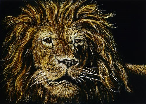 """Lion"" original fine art by Monique Morin Matson"