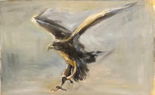 """Eagle,A1"" original fine art by Run-      Zhang Zane"