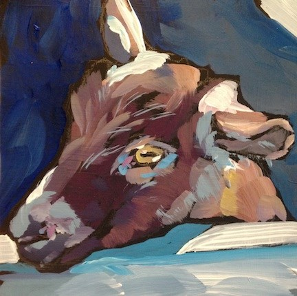 """Brown Goat"" original fine art by Kat Corrigan"