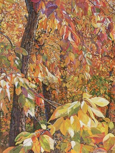 """Wild Persimmon Trees"" original fine art by Nadi Spencer"