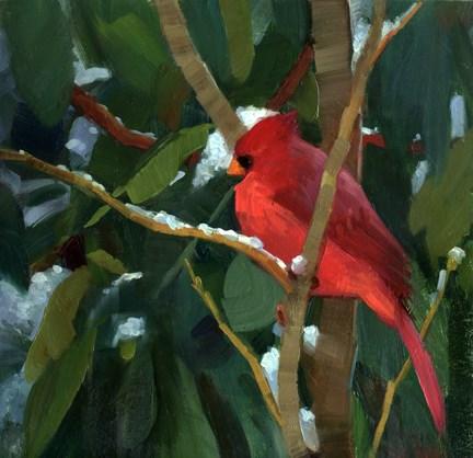 """""""Cardinal"""" original fine art by Kathy Weber"""