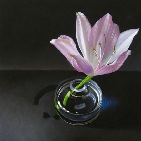 """Amaryllis 6x6"" original fine art by M Collier"
