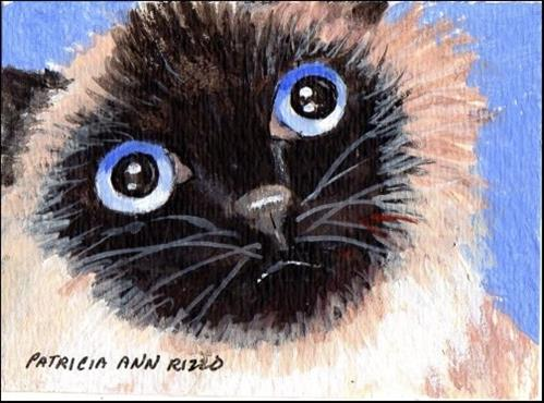 """Himalayan Eyes"" original fine art by Patricia Ann Rizzo"