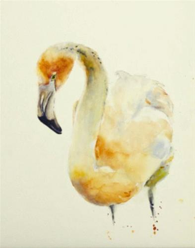 """Flamingo Study"" original fine art by Sue Churchgrant"