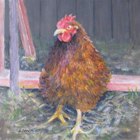 """Barnyard Chicken"" original fine art by Linda Demers"