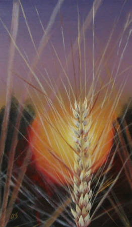 """Sunset Over the Crop"" original fine art by ~ces~ Christine E. S. Code"