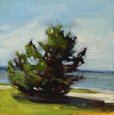 """I do love trees..."" original fine art by Laurel Daniel"