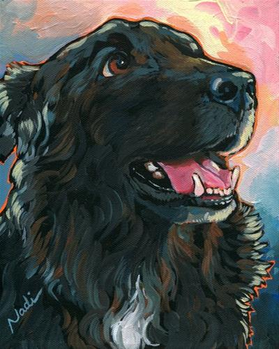 """Blackie"" original fine art by Nadi Spencer"