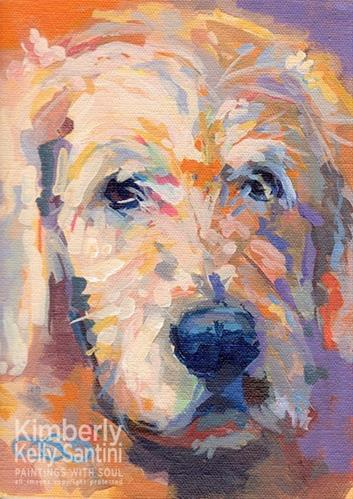 """Oliver - a colorful blonde"" original fine art by Kimberly Santini"
