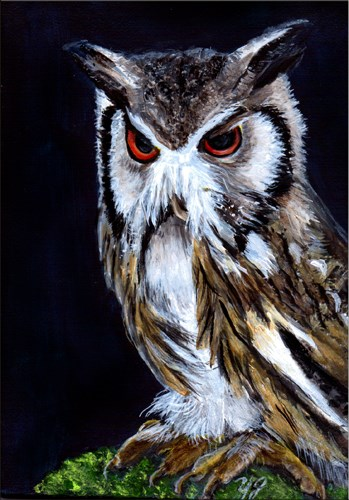 """Orignal Miniature Southern-White Face Owl"" original fine art by Yvette Gaudreau"