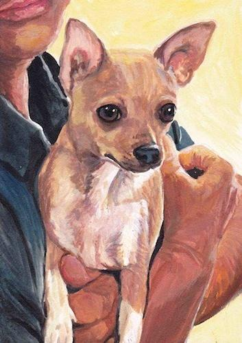 """Romane the Chihuahua"" original fine art by Charlotte Yealey"