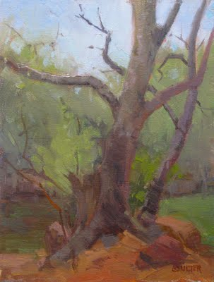 """SEDONA TREE"" original fine art by James Coulter"