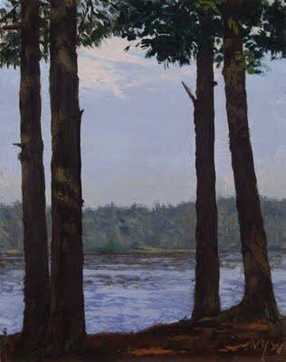 """Dappled Light under the Pines"" original fine art by Abbey Ryan"