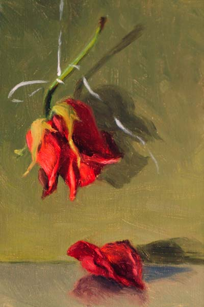 """Hanging Rose"" original fine art by Susan Matteson"