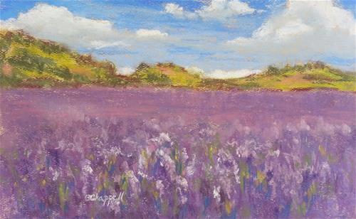 """Field of Lupine"" original fine art by Becky Chappell"