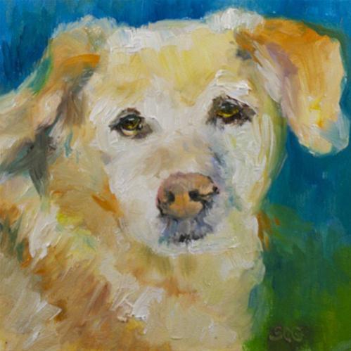 """Old Dog"" original fine art by Sue Churchgrant"
