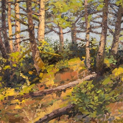 """""""Dune Forest Hillside"""" original fine art by Andrew Daniel"""