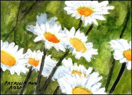"""Simply Daisies"" original fine art by Patricia Ann Rizzo"