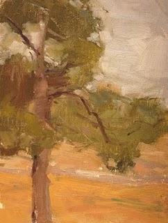"""Tree & Sky Studies"" original fine art by Laurel Daniel"