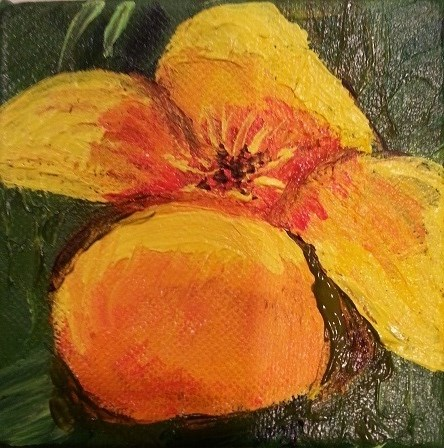 """Mexican Golden Poppie"" original fine art by Jo Allebach"